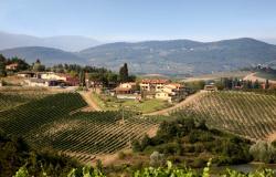 panorama-tenuta_di_morzano